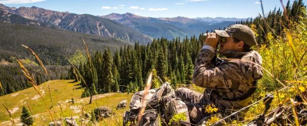 elk calling